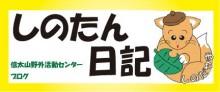 Blog/facebook